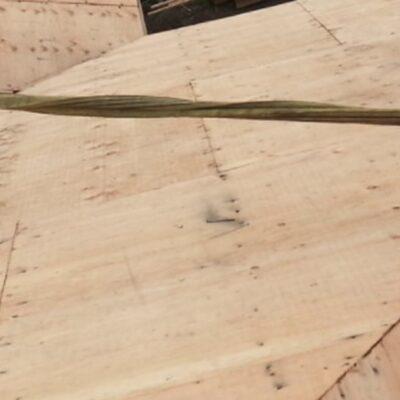 Rigid Tieback Anchor